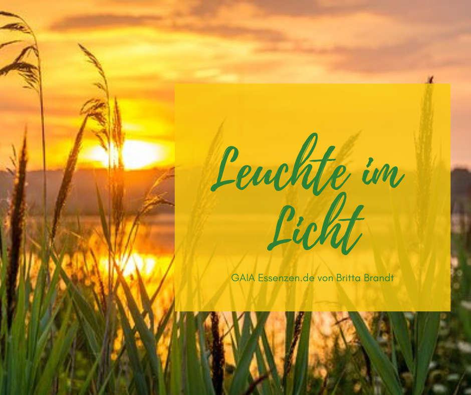 Breite das Licht in dir aus - Lichtlicht
